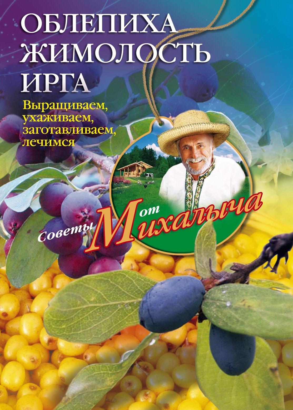 Николай Звонарев Облепиха, жимолость, ирга. Выращиваем, ухаживаем, заготавливаем, лечимся н м звонарев бахчевые культуры сажаем выращиваем заготавливаем лечимся