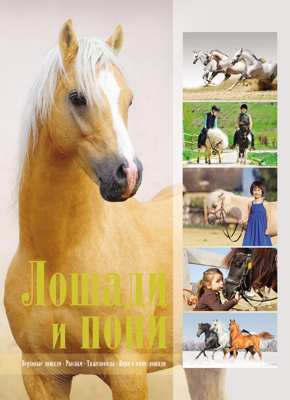 все цены на В. М. Жабцев Лошади и пони онлайн