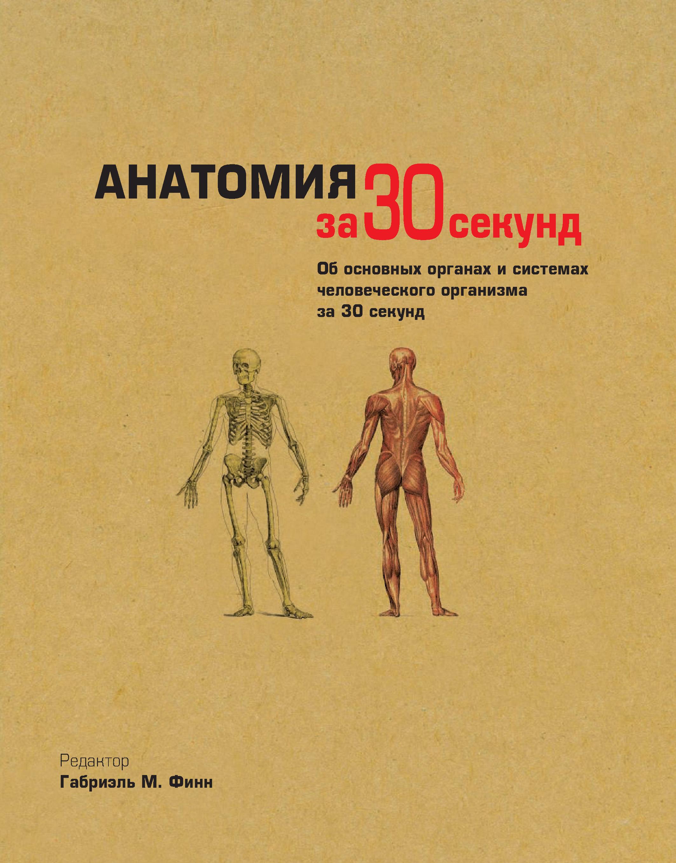 Коллектив авторов Анатомия за 30 секунд