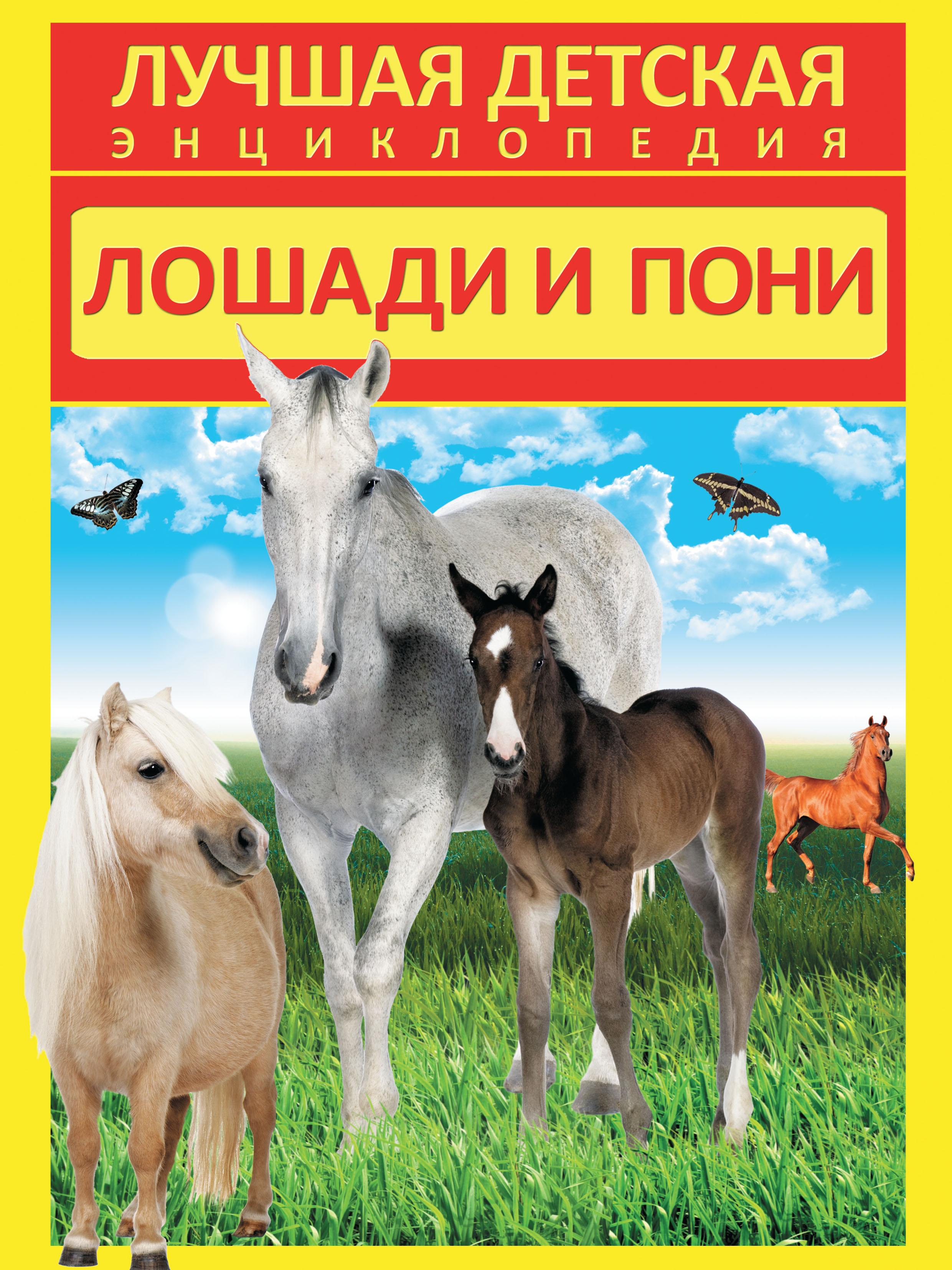 Анна Спектор Лошади и пони
