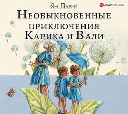 Ларри Ян Леопольдович Необыкновенные приключения Карика и Вали (ил. А. Андреева) обложка