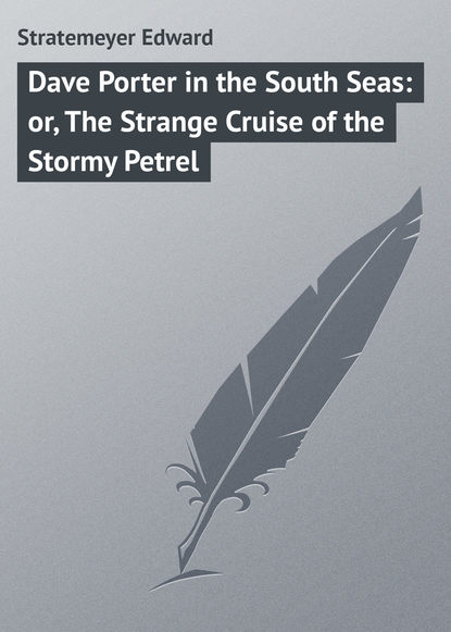 Stratemeyer Edward Dave Porter in the South Seas: or, The Strange Cruise of the Stormy Petrel the influence of motivation in cruise travel