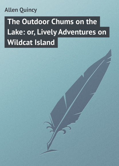 Allen Quincy The Outdoor Chums on the Lake: or, Lively Adventures on Wildcat Island on the island