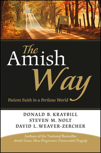 Donald Kraybill B. The Amish Way. Patient Faith in a Perilous World an amish paradox – diversity and change in the world s largest amish community