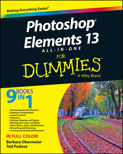 Barbara Obermeier Photoshop Elements 13 All-in-One For Dummies agi team creative photoshop elements 9 digital classroom isbn 9781118017982