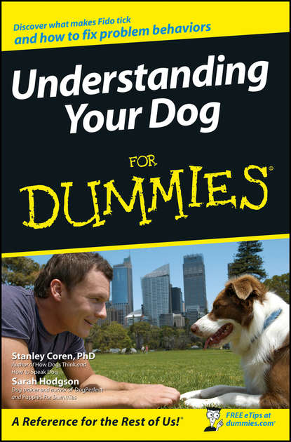 Фото - Sarah Hodgson Understanding Your Dog For Dummies vince stead how to understand and train a alaskan malamute puppy or dog with good behavior