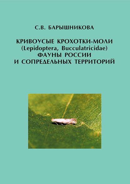 Кривоусые крохотки моли (Lepidoptera, Bucculatricidae) фауны России