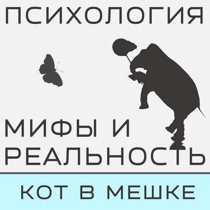 Александра Копецкая (Иванова) Кот в мешке! Часть 2 александра копецкая иванова не такой как все не значит что хуже