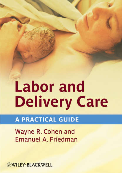 Фото - Cohen Wayne R. Labor and Delivery Care. A Practical Guide lee sanders a practical manual of diabetic foot care