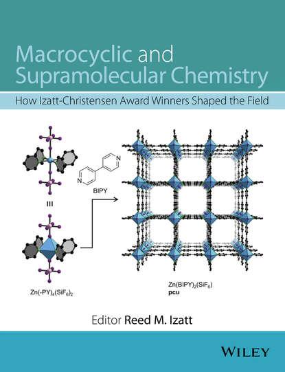 Группа авторов Macrocyclic and Supramolecular Chemistry robert corriu molecular chemistry of sol gel derived nanomaterials