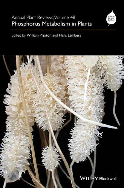 Группа авторов Annual Plant Reviews, Phosphorus Metabolism in Plants william plaxton annual plant reviews phosphorus metabolism in plants