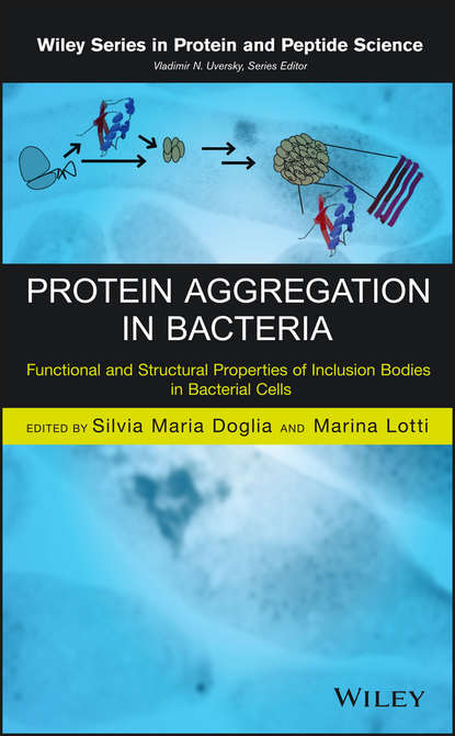 Marina Lotti Protein Aggregation in Bacteria. Functional and Structural Properties of Inclusion Bodies in Bacterial Cells attempts to transfect the prion protein in human cancer cell lines