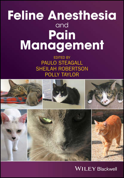 Фото - Группа авторов Feline Anesthesia and Pain Management phillip lerche handbook of small animal regional anesthesia and analgesia techniques