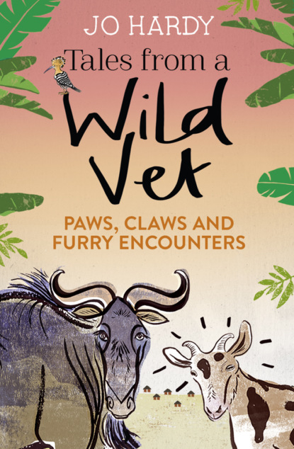 Jo Hardy Tales from a Wild Vet: Paws, claws and furry encounters donkeys