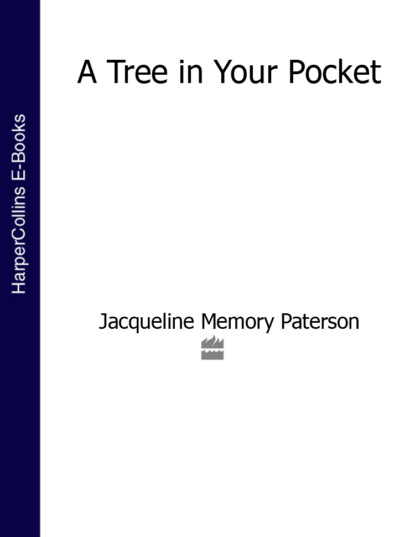 Фото - Jacqueline Paterson Memory A Tree in Your Pocket jacqueline paterson memory a tree in your pocket