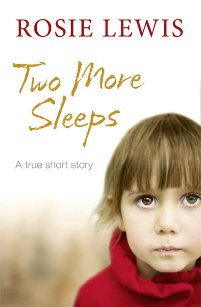 Rosie Lewis Two More Sleeps rosie lewis broken a traumatised girl her troubled brother their shocking secret