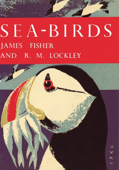James Fisher Sea-Birds scortegagna luna in the sea