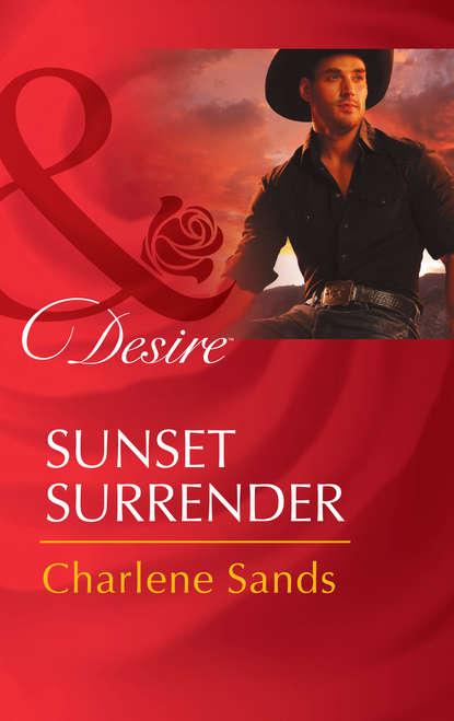 Charlene Sands Sunset Surrender chuck logan after the rain