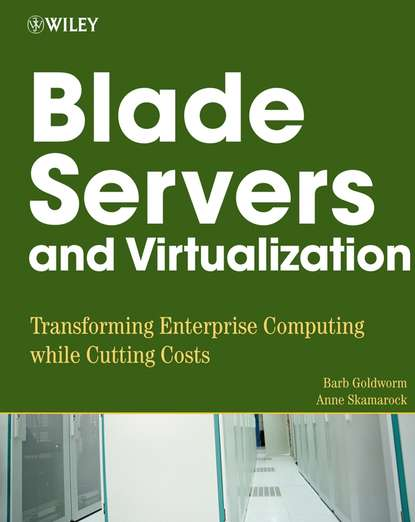Фото - Barb Goldworm Blade Servers and Virtualization network servers with intel d2550 1 86ghz