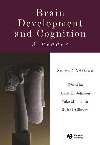 Yuko Munakata Brain Development and Cognition недорого
