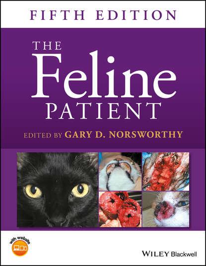 Группа авторов The Feline Patient lynelle r johnson clinical canine and feline respiratory medicine