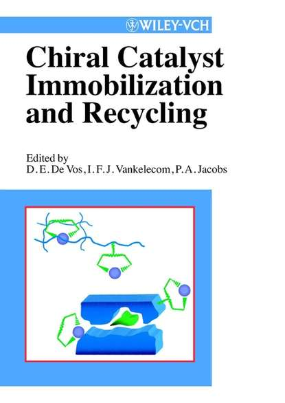 Фото - Dirk De Vos Chiral Catalyst Immobilization and Recycling jian zhou multicatalyst system in asymmetric catalysis