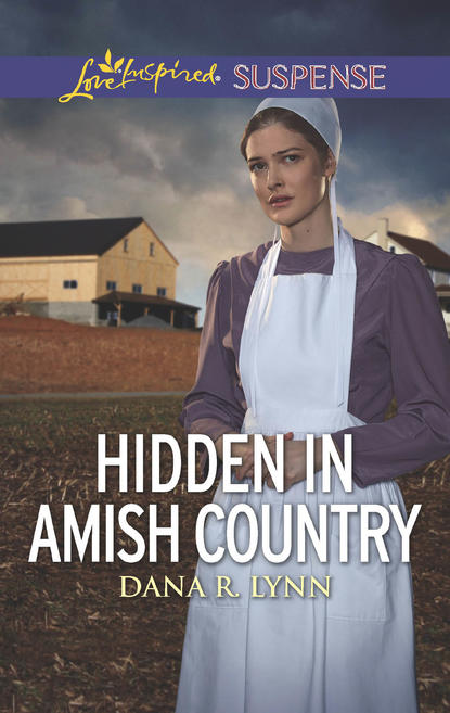 Dana Lynn R. Hidden In Amish Country an amish paradox – diversity and change in the world s largest amish community