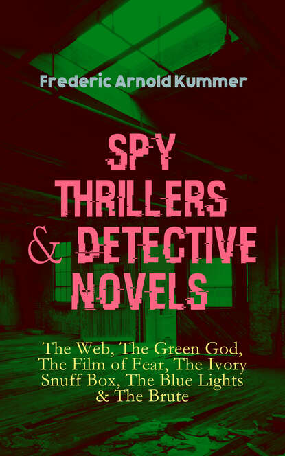 Фото - Frederic Arnold Kummer Spy Thrillers & Detective Novels: The Web, The Green God, The Film of Fear, The Ivory Snuff Box, The Blue Lights & The Brute isham frederic stewart the lady of the mount