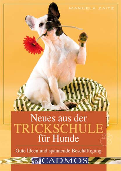 Manuela Zaitz Neues aus der Trickschule für Hunde manuela di franco der himmel ist grün