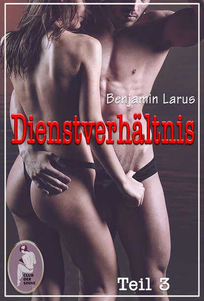 Benjamin Larus Dienstverhältnis, Teil 3 недорого