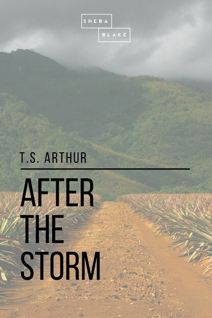 T. S. Arthur After the Storm t s arthur after a shadow
