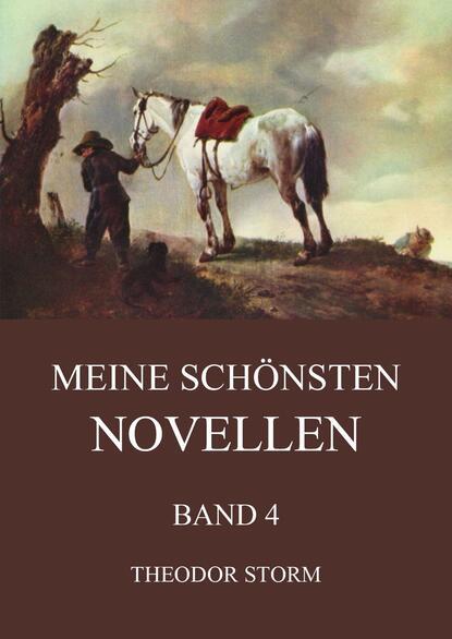 Theodor Storm Meine schönsten Novellen, Band 4 недорого