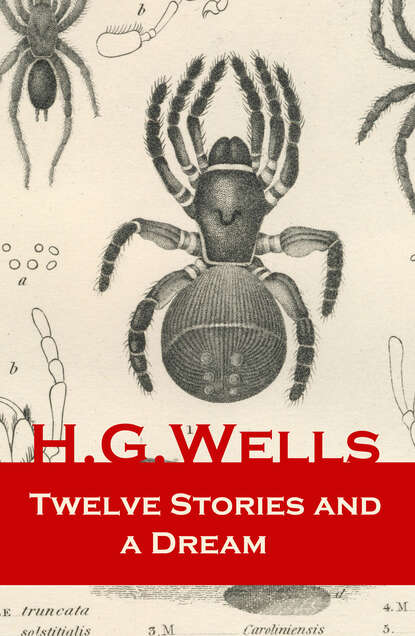 Фото - H. G. Wells Twelve Stories and a Dream (The original 1903 edition of 13 fantasy and science fiction short stories) h g wells select conversations with an uncle the original 1895 edition