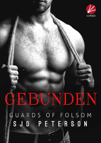 SJD Peterson Guards of Folsom: Gebunden недорого