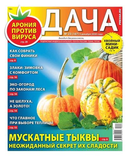 Дача Pressa.ru 23-2020