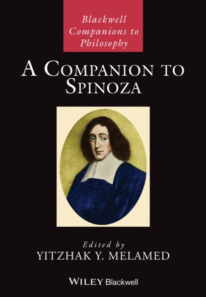 Группа авторов A Companion to Spinoza недорого