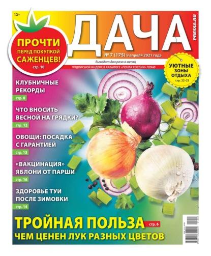 Дача Pressa.ru 07-2021