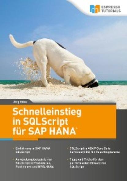 Фото - Jörg Böke Schnelleinstieg in SQLScript für SAP HANA carmen serpe schnelleinstieg in sap business one finanzwesen