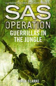 Guerrillas in the Jungle