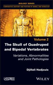 The Skull of Quadruped and Bipedal Vertebrates