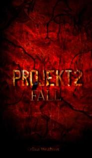 Fall - Projekt  II