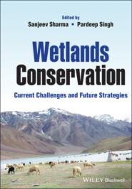 Wetlands Conservation