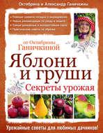 Яблони и груши: секреты урожая от Октябрины Ганичкиной