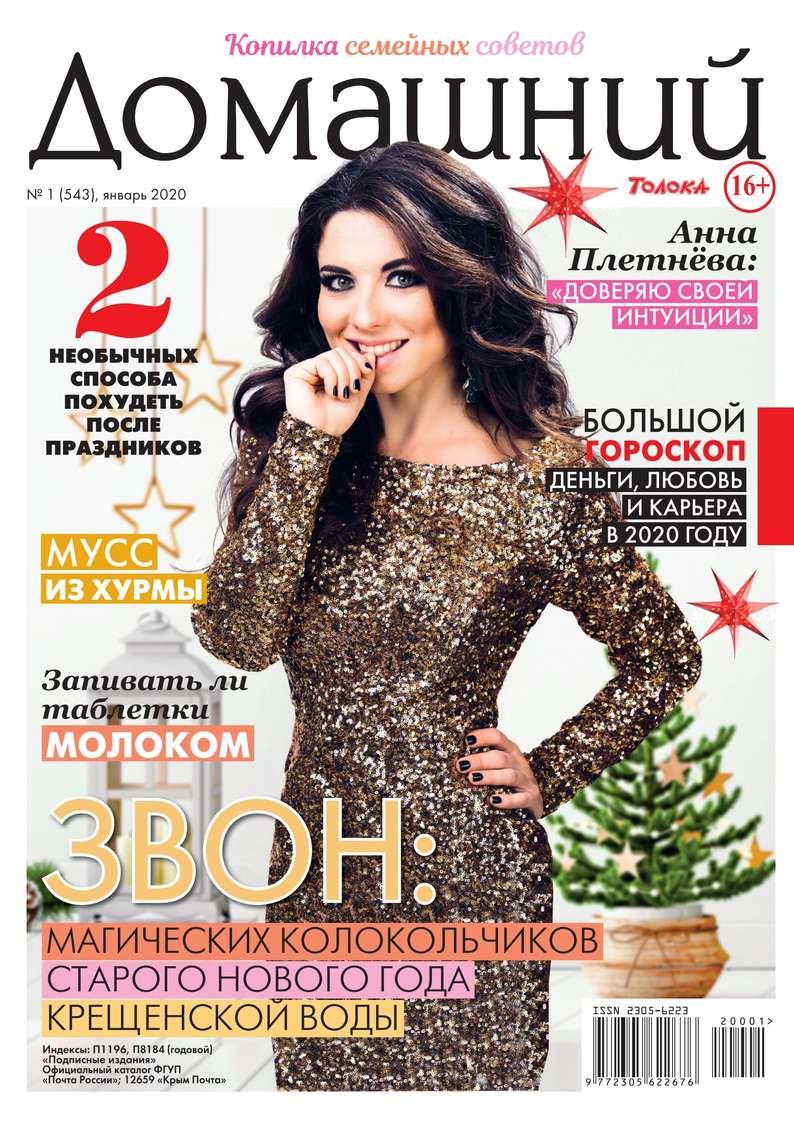 Домашний Журнал 01-2020