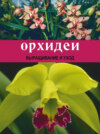 Орхидеи: Выращивание и уход