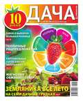 Дача Pressa.ru 06-2016