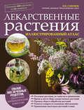 Лекарственные растения. Иллюстрированный атлас