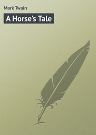 A Horse\'s Tale