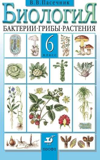 Пасечник биология 6 класс учебник